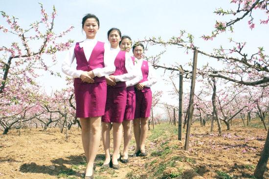 沈铁之春:当桃花遇上动车和动姐